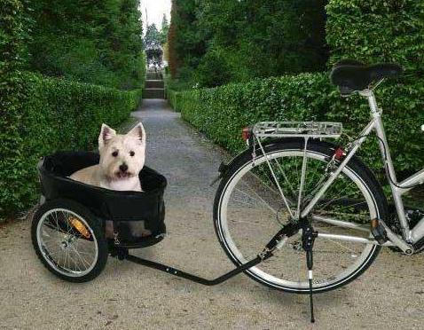 Прицеп для велосипеда для перевозки животных