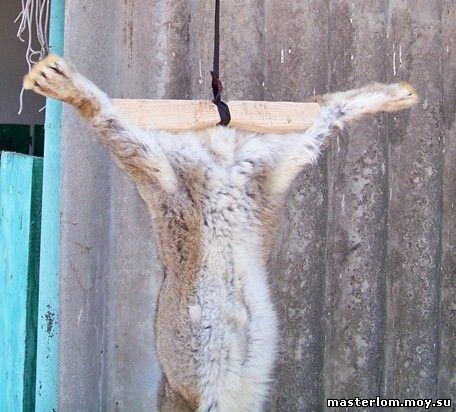 Кролик подвешивается для снятия шкурки - освежевания